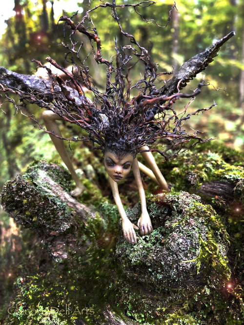 Bloodtwig root fairy 9